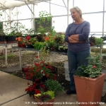 container-gardening-workshop