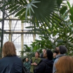 palm-house-tour
